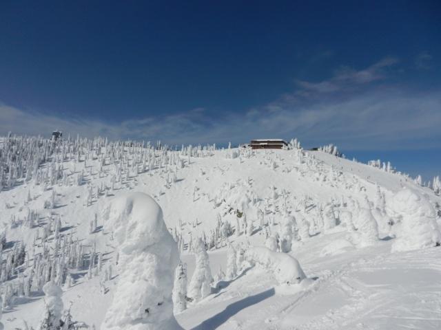 Big Mountain Bluebird - Summit House