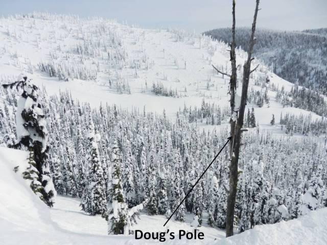Doug's Pole