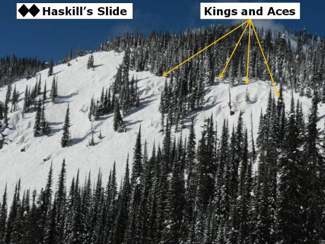 Haskills Kings and Aces
